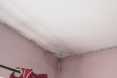 Severe condensation round a bedroom ceiling